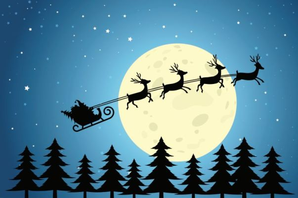 Christmas Reindeer