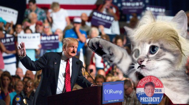 Trump and Cat_edited-1